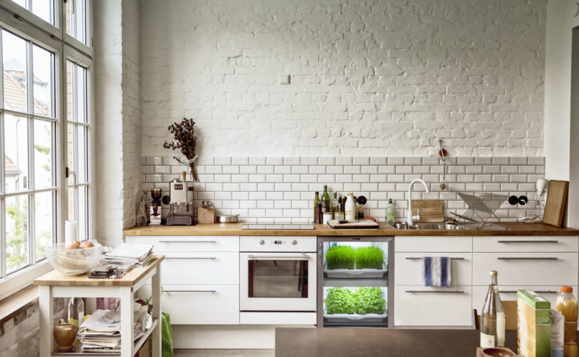 Everything AND the kitchen sink: Refreshing your kitchen for spring